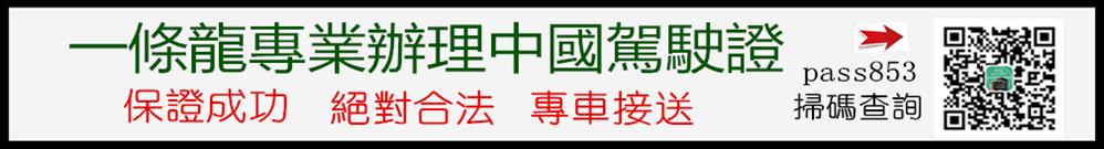 極速辦理中國駕駛證 Logo