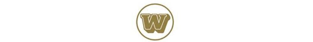 中港通旅運有限公司 Logo